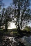 Beautifull landscape. Beautifull dutch landscape Stock Photos
