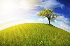 Beautifull landscape with sunrays Royalty Free Stock Images
