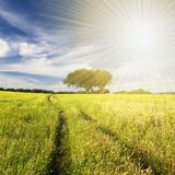 Beautifull landscape with sunrays Stock Photos