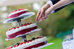 Bride and groom cutting wedding cake. With red fruits Stock Images