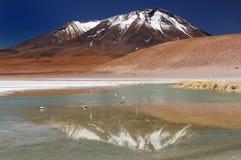 Beautifull le Ande nel Sudamerica Fotografia Stock Libera da Diritti