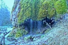Beautifull Little  Waterfall. Nature Waterfall water stock photo