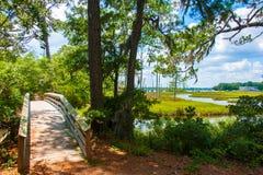 Beautifull national park Stock Photography