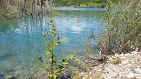 Beautifull Nature Royalty Free Stock Image