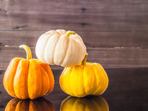 Beautifull pumkins Stock Image