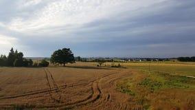 Beautifull sommer的landskape末端 库存照片