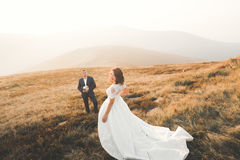 Beautifull wedding couple kissing and embracing near mountain with perfect view Stock Images