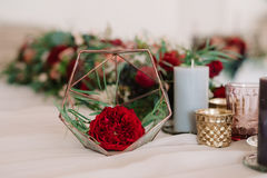 Beautifully abstraction with red flower. In special glass prop stock photo