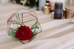 Beautifully abstraction with red flower. In special glass prop Royalty Free Stock Image