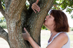 Beautifully aging woman smelling a tree for natural memories Royalty Free Stock Image