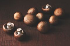 Beautifully arranged portobello mushrooms stock photography