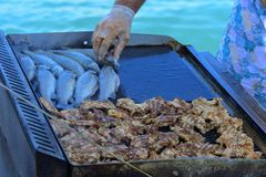 Beautifully cooked fried pieces of quail meat and whole trout fish on an electric grill on a yacht in the open sea. The concept of. Fast cooking delicious and royalty free stock photography