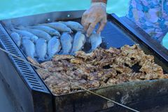 Beautifully cooked fried pieces of quail meat and whole trout fish on an electric grill on a yacht in the open sea. The concept of. Fast cooking delicious and stock photos