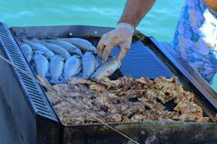 Beautifully cooked fried pieces of quail meat and whole trout fish on an electric grill on a yacht in the open sea. The concept of. Fast cooking delicious and royalty free stock images