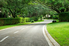 Beautifully curving hedge lined road Royalty Free Stock Image