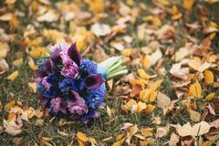 Beautifully decorated bride`s bouquet of different bright colors and green leaves lies on the autumn grass. Wedding theme stock photos