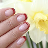 Beautifully decorated nails Stock Images