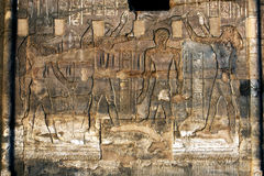 A beautifully decorated wall displaying engravings and hieroglyphs at the Temple of Kom Ombo in Egypt. Royalty Free Stock Image