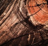 Beautifully detail in wood Royalty Free Stock Images