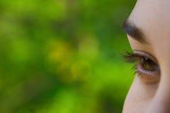 Beautifully eye Stock Image