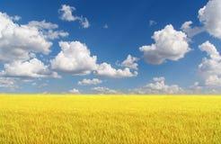 Beautifully landscape Stock Photos