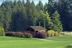 Beautifully landscaped lawn & custom utility shed Stock Photos