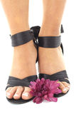 Beautifully manicured feet with flowers Stock Images