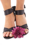 Beautifully manicured feet with purple flower Stock Photography
