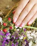 Beautifully manicured fingernails Stock Photography