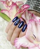 Beautifully manicured fingernails Royalty Free Stock Photography
