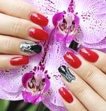 Beautifully manicured fingernails Royalty Free Stock Photo