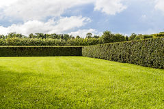 Beautifully manicured garden bushes Royalty Free Stock Photography