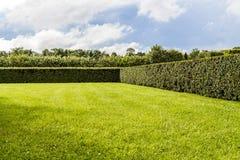 Beautifully manicured garden bushes Royalty Free Stock Photography