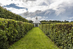 Beautifully manicured garden bushes Royalty Free Stock Photos