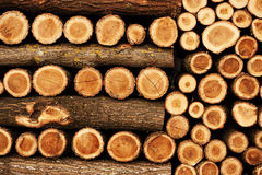 Beautifully ordered woodpile Royalty Free Stock Images