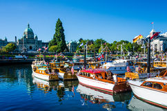 Beautifully restored classic boats. Gather in the Inner Harbour of the provincial capital with the parliament buildings in the background. The 36th Annual Stock Image