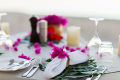 Beautifully served table royalty free stock image