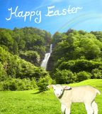 Lovely sunny water fall on a bright summer day with a cute lamb and a beautiful blue sky collage stock image