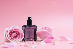 Perfume bottles on pink background. Beautifulperfume bottles on pink background royalty free stock photography