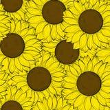 Beautifulseamlessachtergrond met zonnebloemen. Royalty-vrije Stock Afbeeldingen