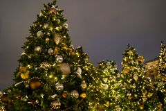 Beautifuly decorated Christmas tree in the city at night.  royalty free stock image