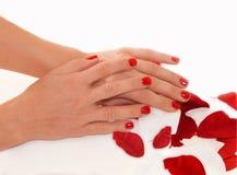 Beautifuly manicured les mains de la femme Photo libre de droits