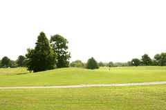 Beautigul Golf green grass sport fields Royalty Free Stock Images