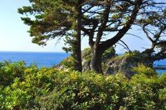 Beautiuful scenery of Aegean sea Stock Images