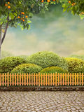 Beautiul Garten stockfoto