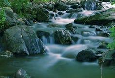 beautuful δάσος ρυακιών Στοκ εικόνα με δικαίωμα ελεύθερης χρήσης