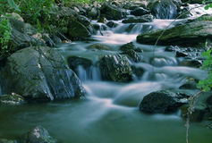 Beautuful Brook In The Forest Royalty Free Stock Image