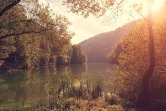 Beauty湖在秋天 免版税库存图片