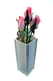 Beauty. Isolated Flowers in a Vase Royalty Free Stock Images