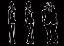 Beauty. Three kinds of women's beauty Stock Photography